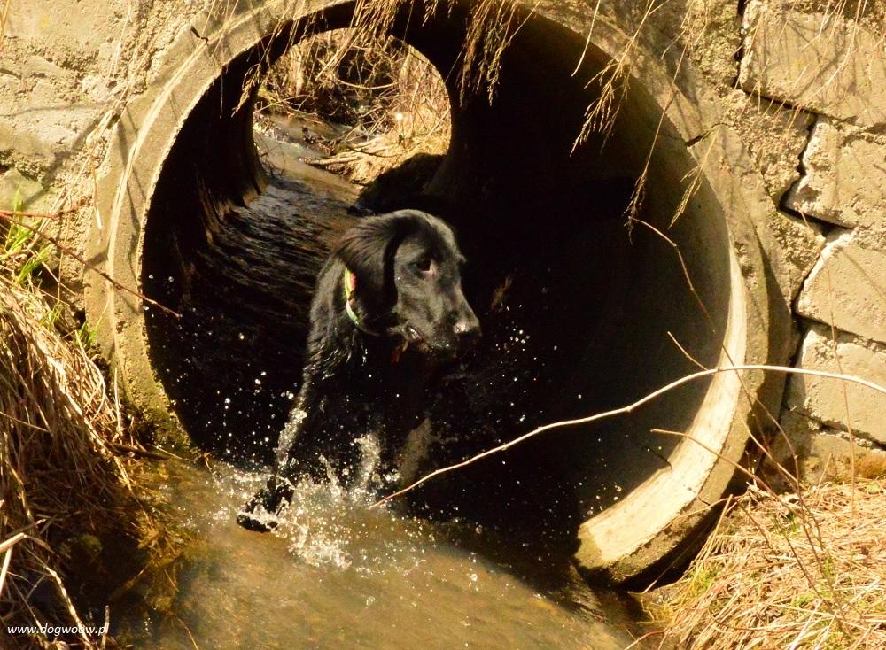 cindy w tunelu