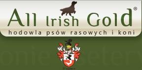 all irish gold logo