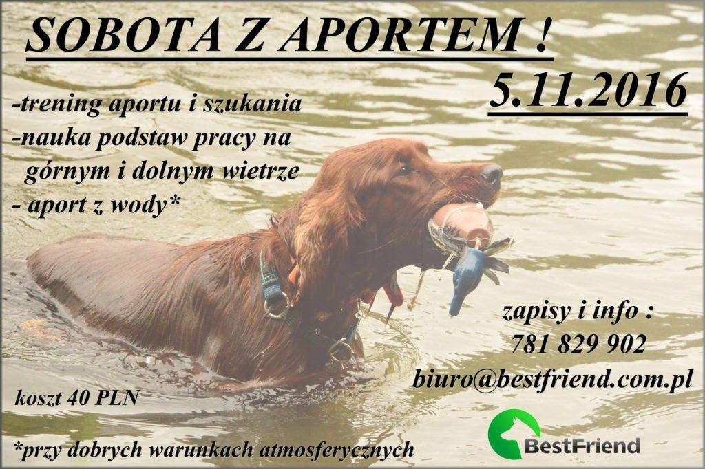 sobota-z-aportem